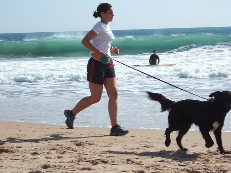 Jogging on a beach is wonderful for both dog and runner, especially if the dog can run free