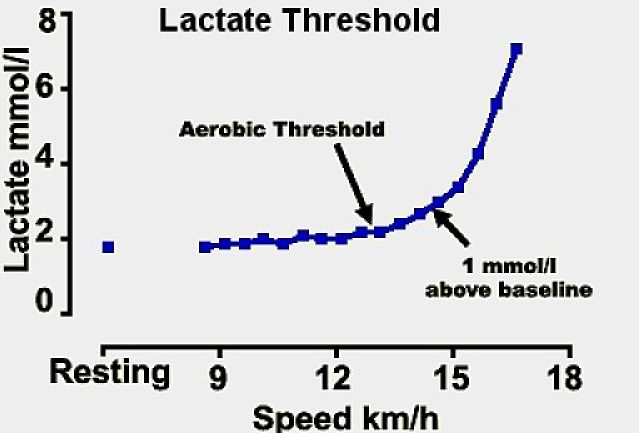 How running speed affects lactate levels and the shift from aerobic to anaerobic energy production. This defines the magic pace - just before the lactate threshold