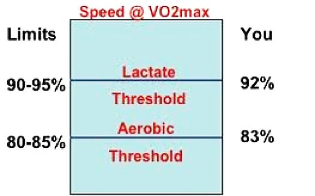 VOmax - how it relates to the Lactate and Aerobic Running Thresholds