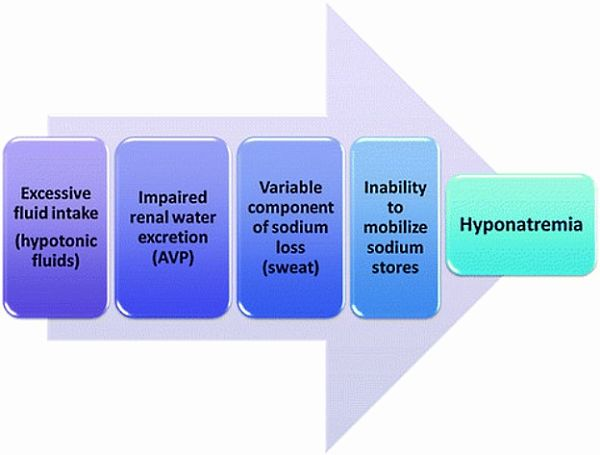 How Exercise-Associated Hyponatremia (EAH) develops during exercise