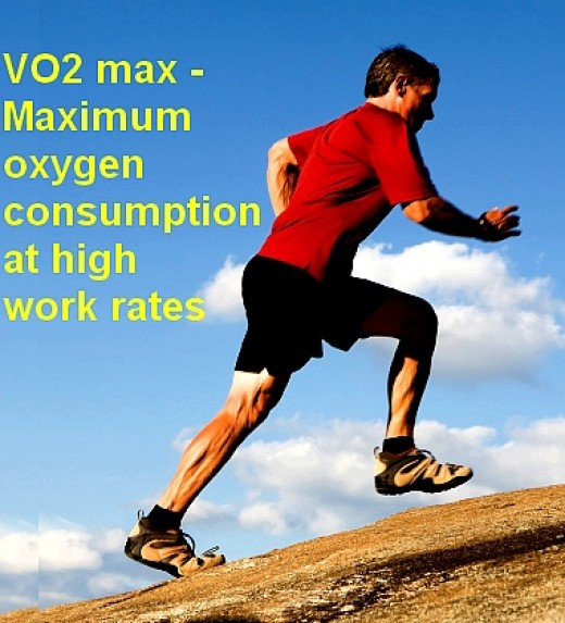 VOmax defines the maxiumum aerobic work rate and is a good measure of fitness