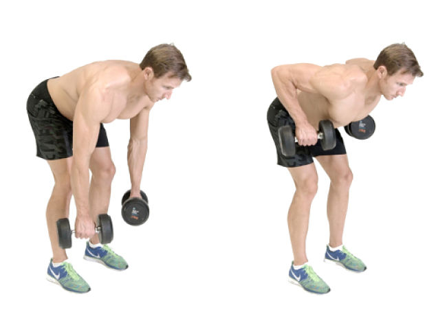 Upright Dumbbell Row Conditioning Exercise Using Hand Weights