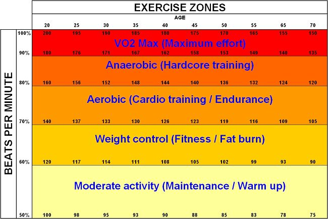 Exercise work zones - red zone (VO2Max), anaerobic zone (brown), aerobic zone (red), weight control (orange)) and warming up (yellow)