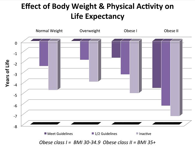 Effect of Body Weight and Physical Activity on Life Expectancy