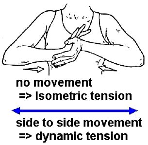 What are isometric exercises