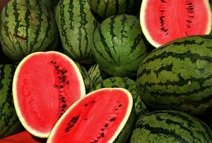 The humble watermelon has many outstanding health benefits